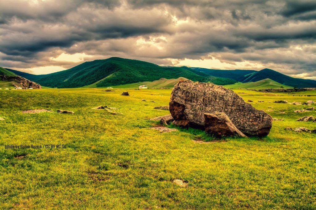 a rock in a field